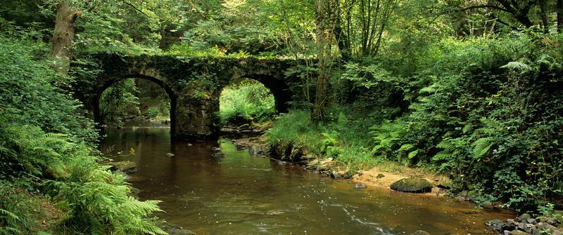 Ma présentation - Page 3 Pont-du-moulin-du-Pont_La-Tardoire-Cheronnac_imgpres